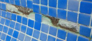 Reparación grietas en piscinas